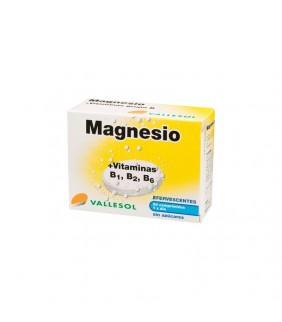 Magnesio y vitaminas 24...