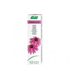 Dentaforce Echinacea pasta...