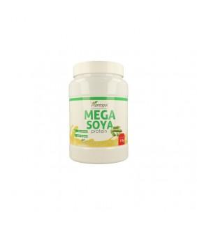 Plantapol Mega soya protein...