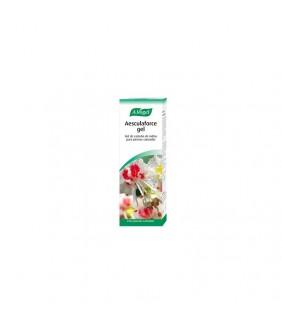 Aesculaforce Gel 100 ml