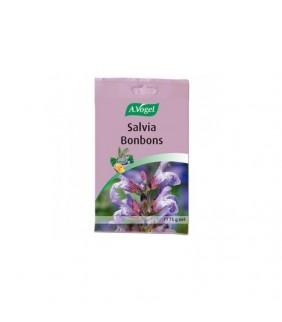 A. Vogel Salvia bonbons 75...