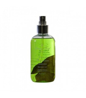 Agua Fresca Bio Lluvia 250 ml